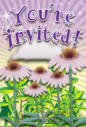 Cone Flower Invitation